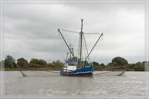 Krabbenfischer auf der Weser
